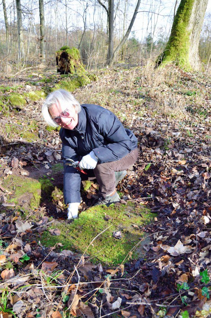 Pflegeeinsatz des Verschönerungsverins Kirchheim bei der Kleemeisterei im Talwald